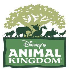 Disney Animal Kingdom.jpg