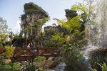 Pandora Landscape 07