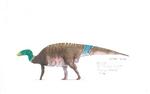 Maiasaura concept 3.jpg