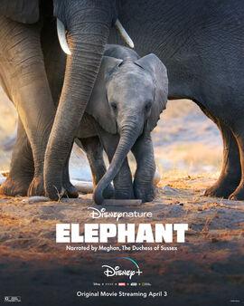 Elephant - Poster.jpg