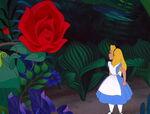Alice-in-wonderland-disneyscreencaps.com-3036