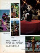 Disney-world-florida-life-10-15-1971-3-620x807
