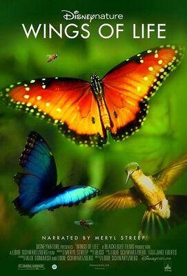 Wings of Life poster.jpg