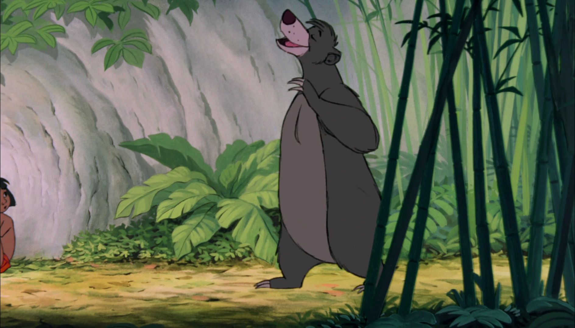 Baloo/Gallery/Films and Television