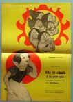 Snow white romanian poster