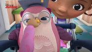 Suki grabs professor hootsburgh's beak