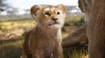 The Lion King (2019 film) Simba cub