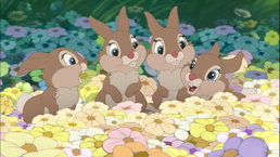 Thumper sisters.png