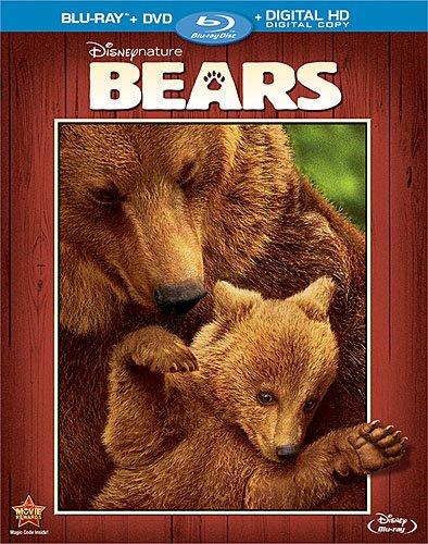 Bears (video)