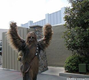 Sww10 Chewbacca-1-
