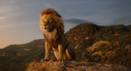The Lion King (2019 film) (11)