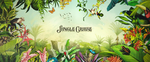 Jungle Cruise (Title Card)