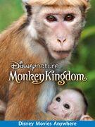 Monkey Kingdom DMA