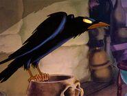 Raven (Snow White)