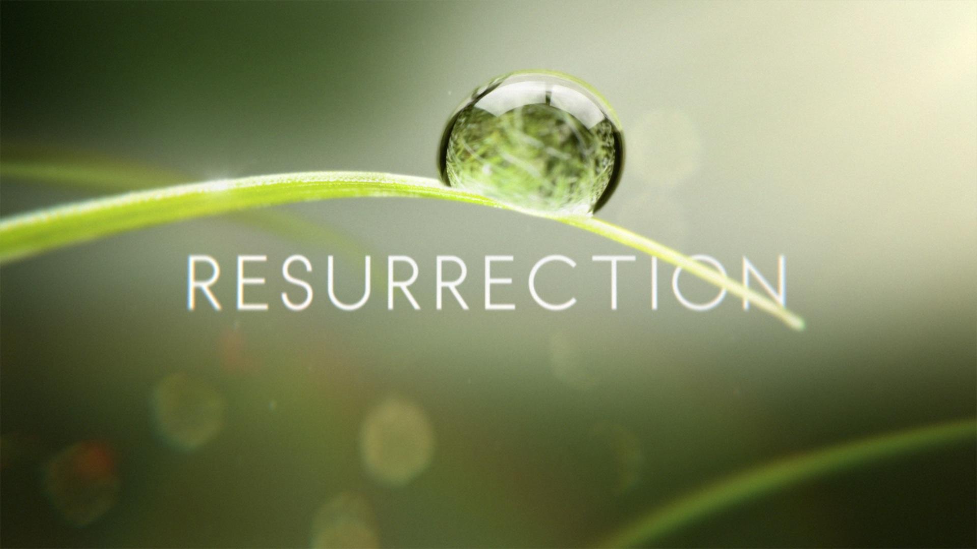 Resurrection (U.S. TV series)