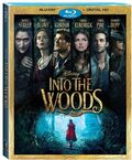 Into the Woods Blu-Ray DVD Cover.jpg