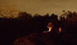 Lions Kilimanjaro Safaris Night 02