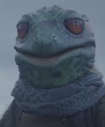 Miespuolinen sammakko-olento