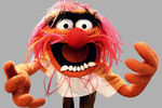 150921-news-the-muppets-animal