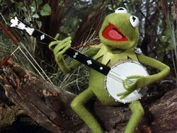 Kermit1.jpg