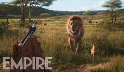 Lion-king-excl.jpg