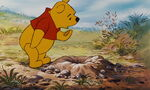 Winnie the Pooh found out it's Windsday
