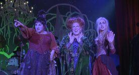 Hocus pocus main