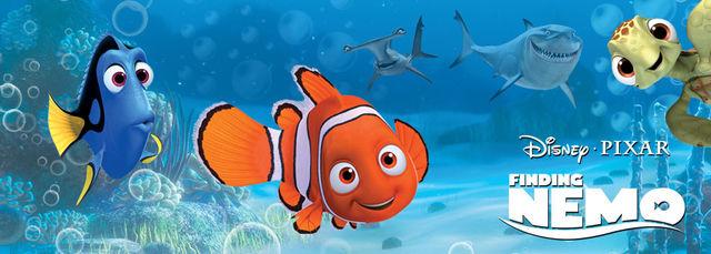 Nemo/Galeria