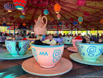 Mad Tea Party WDW 5