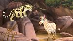 The-golden-zebra (566)