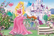 Aurora-princess-aurora-32398919-800-534