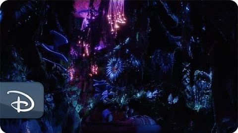 Creating Pandora – The World of Avatar as a Real Place Disney's Animal Kingdom