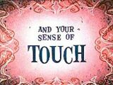 You and Your... Sense of Touch
