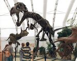 Dinosaur Jubilee (04-98)