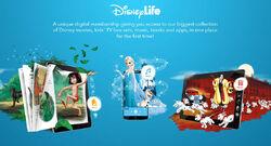 Disney-life-webpage.jpg