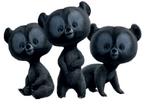 Harris, Hubert y Hamish como osos