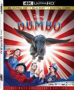 Dumbo 4K.jpeg