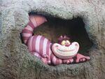 Cheshire-Cat-in-Disneyland-the-cheshire-cat-24448748-636-477