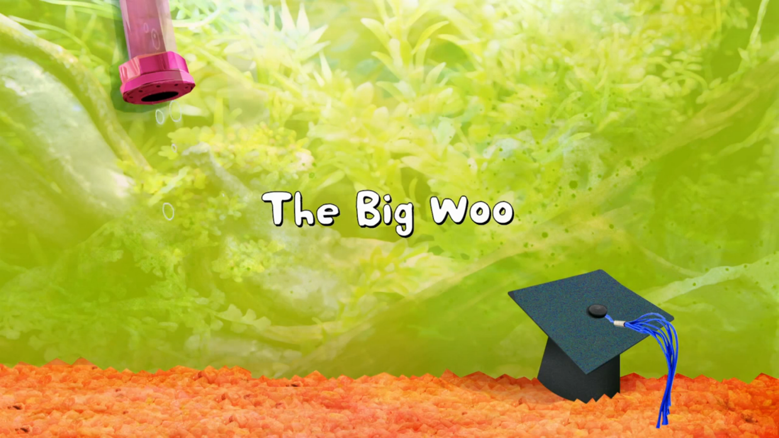 The Big Woo