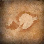 ARLO-u-SPOT Hoehlenmalerei Findet-Nemo