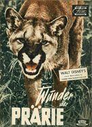 Vanishing prairie german poster