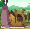 Bessie Amphibia