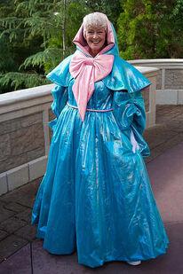 Fairy Godmother Parks