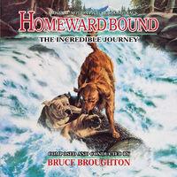 HomewardBound isc330 600a