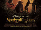 Reino dos Primatas