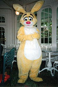 Rabbit-01-200.JPG