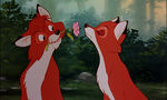 Fox-and-the-hound-disneyscreencaps.com-7488