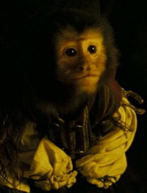 Jack, el Mono