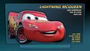 Zygzak McQueen65