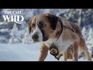 The Call of the Wild - Wild Places Clip - 20th Century Studios